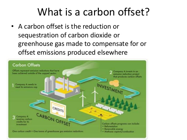 What Is carbon Offset Programme