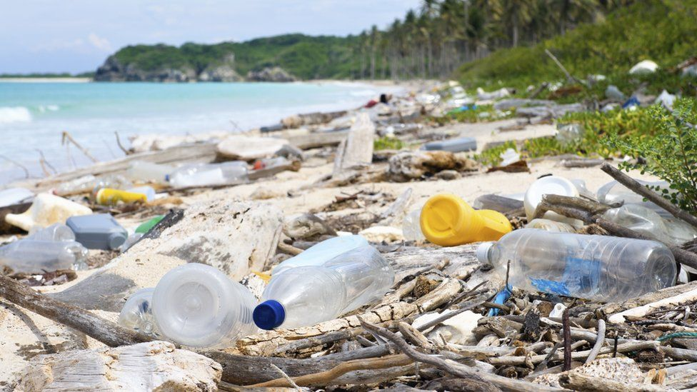 Research Uncover Enzymes That Could Break Down Plastic Polluting Our Environment